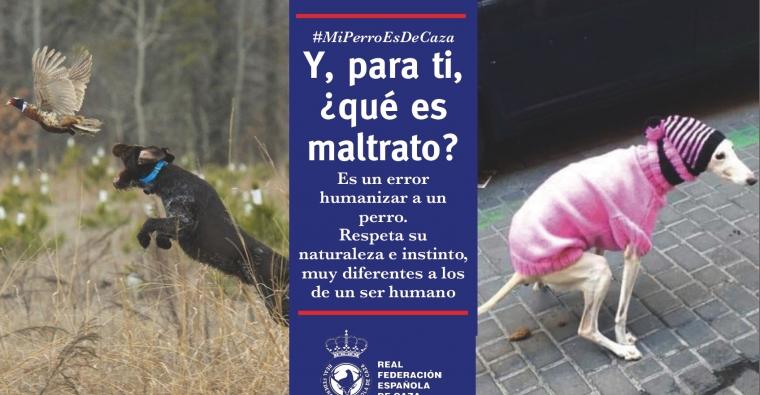 La RFEC denuncia que la humanización de los perros supone una forma de maltrato