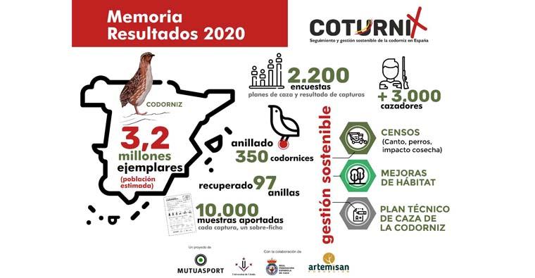 MÁS DE 3 MILLONES DE EJEMPLARES DE CODORNIZ EN ESPAÑA