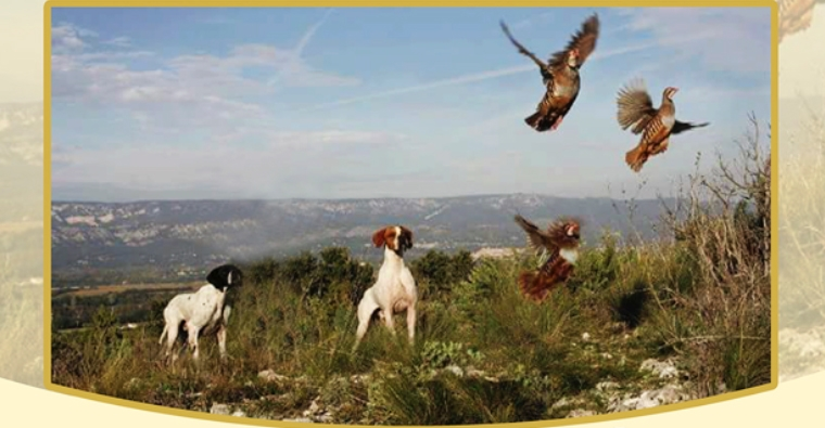 II Encuentro cinegético del día de la caza natural